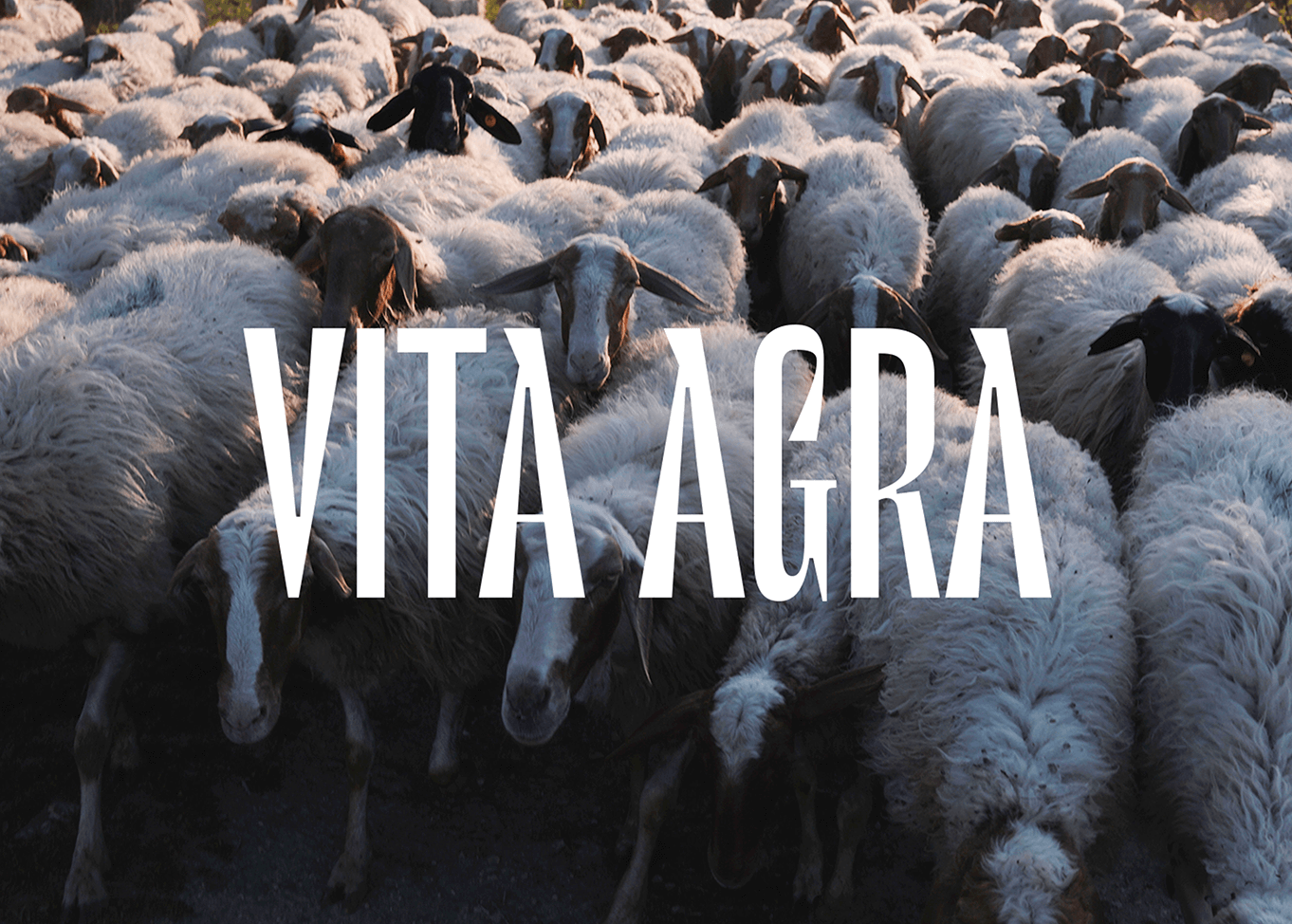 vita-agra-documentando-le-radici